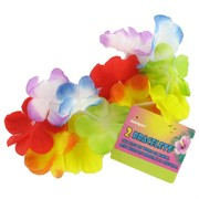 Bracelet / Anklet Luau Party Rainbow Flower Pk2