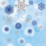 Blue and Silver Snowflake Cocktail Napkins 2Ply Pk 16