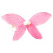 Princess Party Glitter Wings Pk1