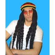 Rasta Wig with Braids & Hat Pk 1