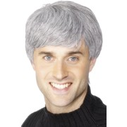 Corporate Executive Short Grey Wig Pk 1