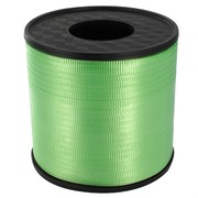 Ribbon Curling  500Yds 5mm Mint Green Pk1