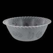 Frosted Plastic Bowl - Large 25.5cm Pk1