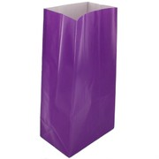 Bags Party Purple Paper Pk12