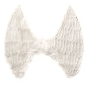 Angel Party Wings - White With Feathers Pk1