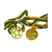 Gold Winner Medal Party Favours Pk 100