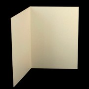 Bi-Fold Card Pack C6 Curious Metallic White Gold Pk20