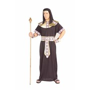 Egyptian Pharaoh Costume (Adult) - Pk 1