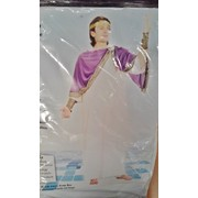 Adult Caesar Costume - Long (One Size Fits Most) Pk 1