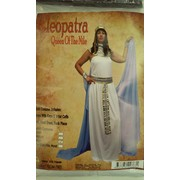 Adult Cleopatra Deluxe Costume - Large Pk 1