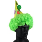 Green Clown Hat With Hair Pk 1