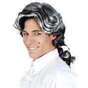 Black & Grey Wig with Ponytail Pk 1