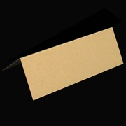 Place Card Pack Curious Metallic Gold Leaf Pk10