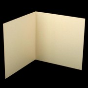 Bi-Fold Card Pack 120 x 120 Curious Metallic White Gold Pk20