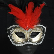 Black & Gold Masquerade Mask With Red & Black Feathers Pk 1