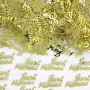 Gold Just Married Confetti Pk 1 (14g)