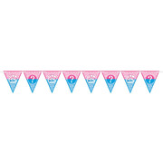 Girl or Boy Gender Reveal Pennant Banner (4.57m) Pk 1