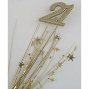 Number 21 Gold Top Foam Spray Pick Onion Pk 1