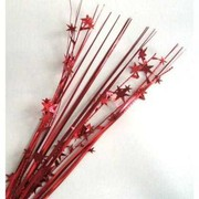 Red Stars Spray Pick Onion Pk 1