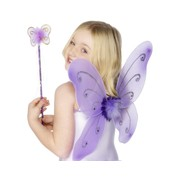 Child Purple Butterfly Wings & Wand Pk 1