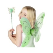 Child Green Butterfly Wings & Wand Pk 1
