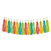 Multi Coloured Tissue Paper Tassel Garland Kit (2.43m) Pk 1