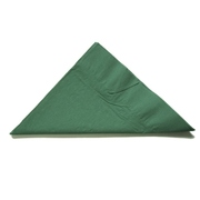 Hunter Green Party Napkins - Lunch 2 ply Pk50