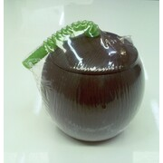 Plastic Coconut Cup with Green Flexible Straw Pk 1