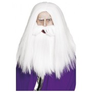 Magician Long White Wig & Beard Set Pk 1
