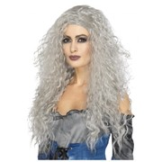 Halloween Long Grey Messy Banshee Wig Pk 1