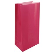 Bags Party Hot Pink Paper Pk12