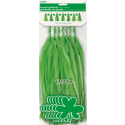 St Patrick's Day Green Tassel Garland with Shamrocks (2.13m) Pk 1