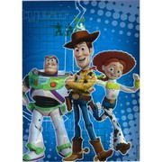 Toy Story Loot Bags Pk 8