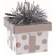Balloon Weight Gift Box Silver Pk1