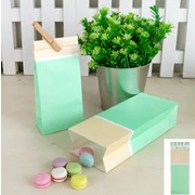 Green Sorbet Paper Party Loot Bags Pk 4