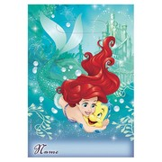 Ariel Little Mermaid Loot Bags Pk 8