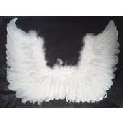 White Feather Wings with Silver Tinsel Pk1